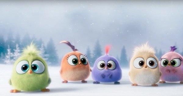 Filhotes dos Angry Birds cantam música de Natal em vídeo superfofo