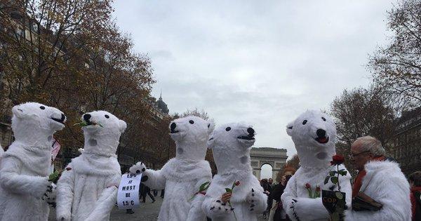 ONGs fazem manifestação em Paris contra conclusões da cúpula ...
