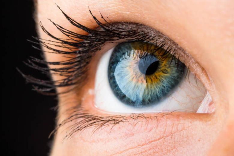O verão está chegando e, com ele, começam a aparecer as preocupações e cuidados específicos com a pele, o cabelo, as unhas e corpo. Nesse período de férias, calor, festas, piscina, mar, areia e sol, os olhos também merecem uma atenção e um cuidado especial. A oftalmologista e gerente médica da Johnson & Johnson Vision Care, Wânia Freire, traz dicas para cuidar bem dos olhos e das lentes de contato no verão. Veja a seguir!