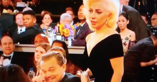 Leonardo DiCaprio faz careta após esbarrão de Lady Gaga no ...