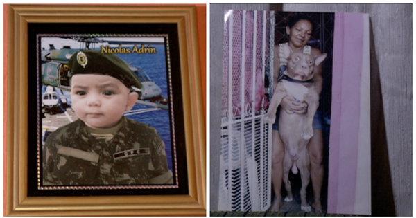 Bebê é internado após ataque de pitbull em PE - Fotos - R7 Cidades
