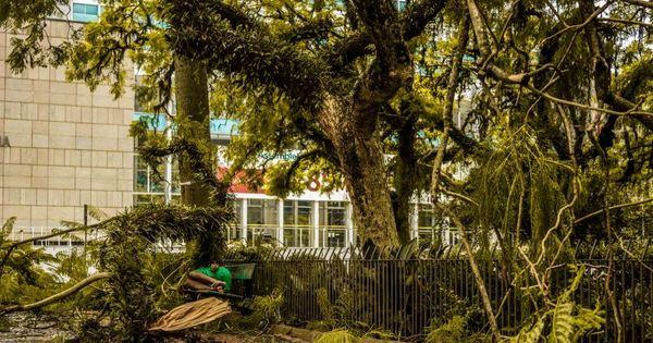Porto Alegre segue sem previsão para normalizar abastecimento de ...