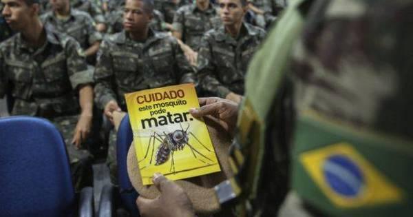 Surto de microcefalia no Nordeste afeta turismo e Carnaval ...