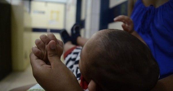 Pernambuco busca bebês com suspeita de microcefalia sem ...