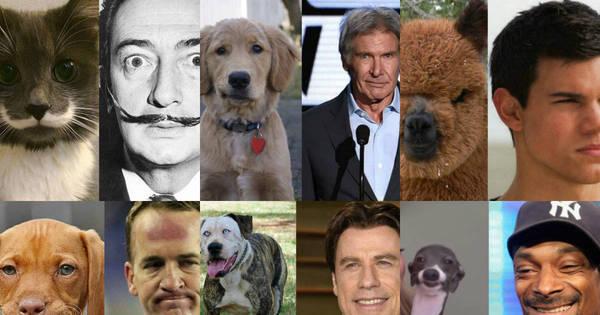 De Mauricio Mattar a John Travolta! Confira as celebridades que ...