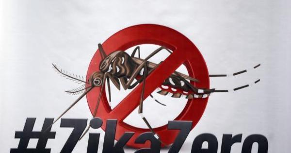 RS suspende uso de larvicida apontado como possível causador de ...