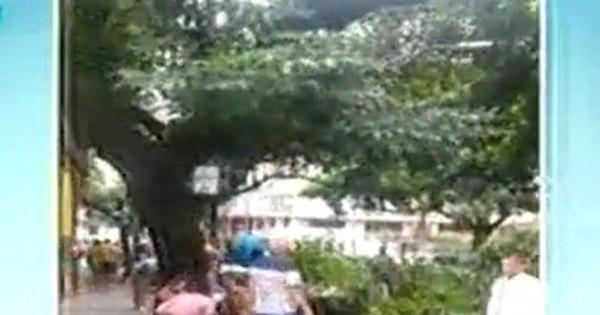 Galhos de árvore caem e atingem clientes de bar em BH - Notícias ...