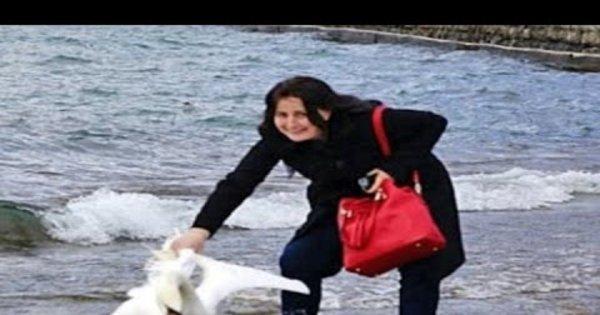 Absurdo: mulher tira cisne de lago para fazer selfie e mata o animal ...