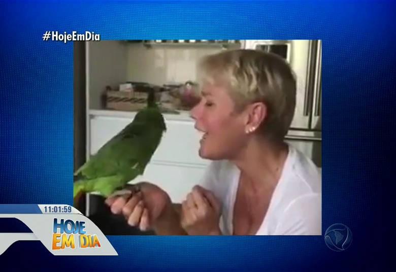 Quem também ama animais é Xuxa, que tem até um mini zoo em casa: oito cachorros, aves e saguis• 'Fiel pra cachorro!' Cão fica famoso ao se tornar cliente fiel de padaria. ASSISTA!