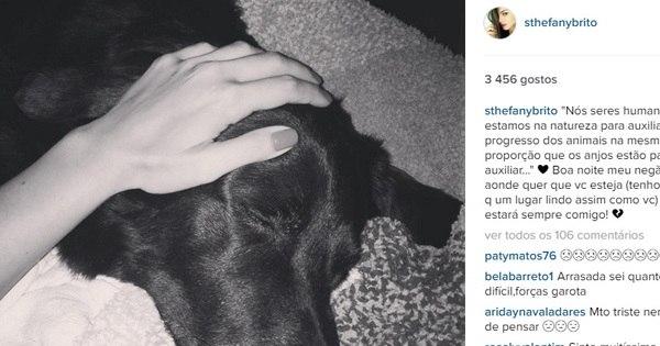 Emocionada, Sthefany Brito comenta morte do seu cachorro ...