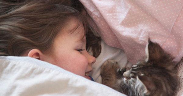 Garota autista supera dificuldades com a ajuda de gato de estimação