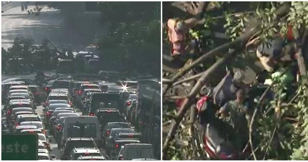 Queda de árvore deixa feridos e bloqueia 23 de Maio - Notícias - R7 ...