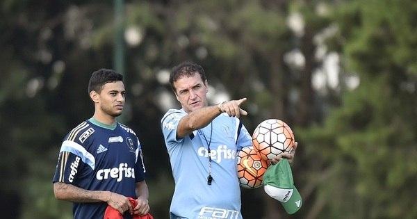 Palmeiras desafia sorte para seguir vivo na Copa Libertadores ...