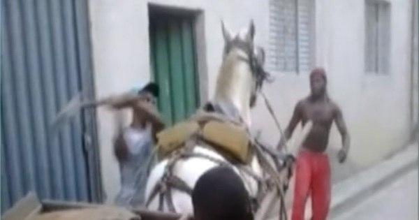 """Carroceiro espanca cavalo por """"fraqueza"""" e revolta moradores ..."""