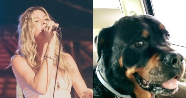 Joss Stone adia turnê para cuidar de cachorrinha de estimação ...