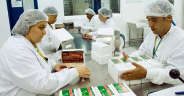 Brasil registra 1.571 casos de H1N1, com 290 mortes - Notícias - R7 ...