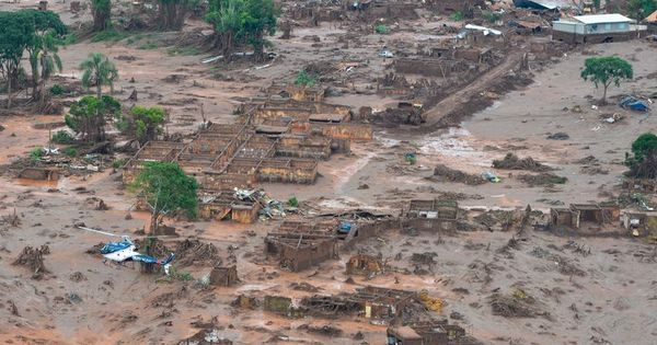 Seis meses após desastre, lama de Mariana ainda afeta animais ...