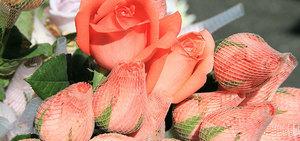 Programa mostra como está o mercado de flores às vésperas do Dia das Mães