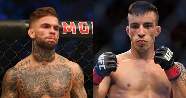 Promessa brasileira é a grande estrela do UFC deste sábado ...