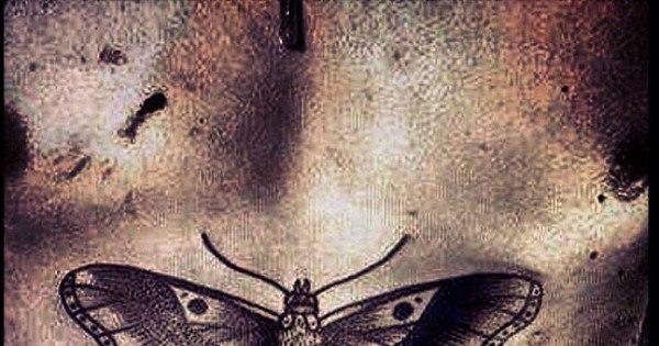 Você conhece as tatuagens dos famosos? - Entretenimento - R7 Pop