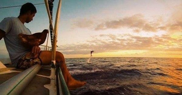 Inseparáveis! Viajante navega pelo mundo acompanhado de sua ...