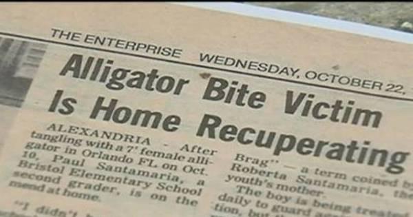 Disney já foi processada por outro ataque de jacaré, segundo jornal ...