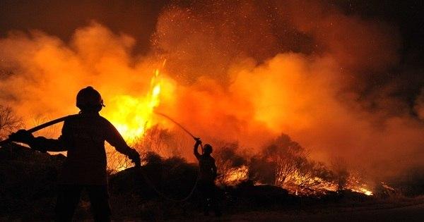 Brasil é líder em assassinatos de ambientalistas no mundo. Veja ...