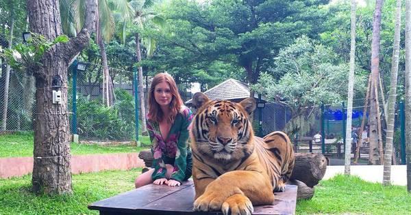 Marina Ruy Barbosa posa ao lado de tigres na Tailândia e causa ...