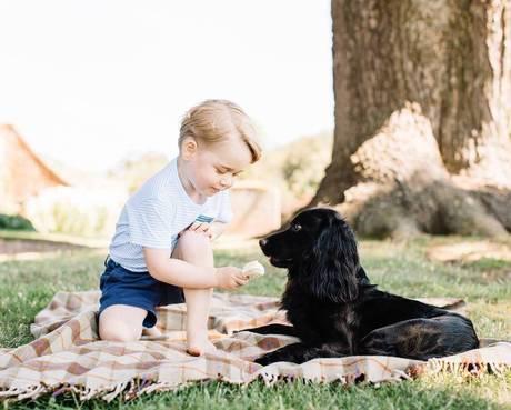 Príncipe George faz três anos e aparece em foto fofa na internet