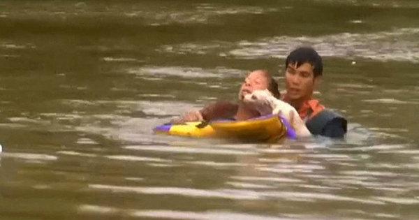 Americana escapa com cachorro de carro afundando em enchente ...