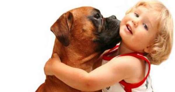benefícios para as crianças que crescem com animais de estimação