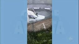Vídeo flagra cachorro sendo lançado por cima de muro em terreno de Guarulhos ()