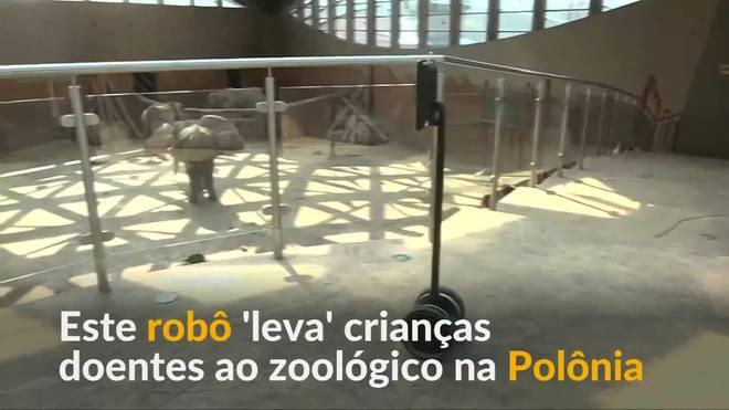 Robô oferece passeio virtual por zoológico para crianças doentes