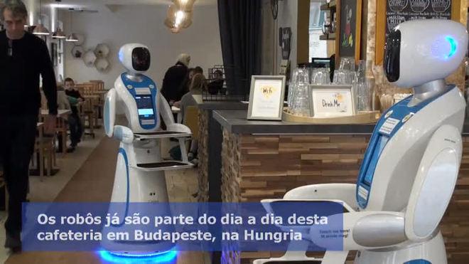 Garçons robôs são atração em cafeteria na Hungria