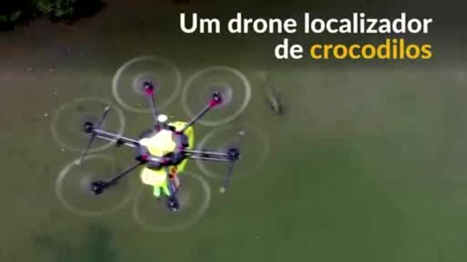 Austrália lança serviço de drone localizador de crocodilos