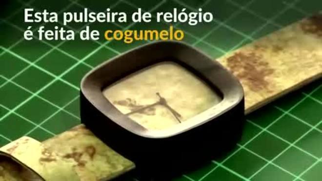 Cogumelos são usados para fabricar couro ecológico