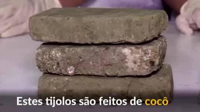 Estudantes filipinos criam tijolos ecológicos de cocô de cachorro