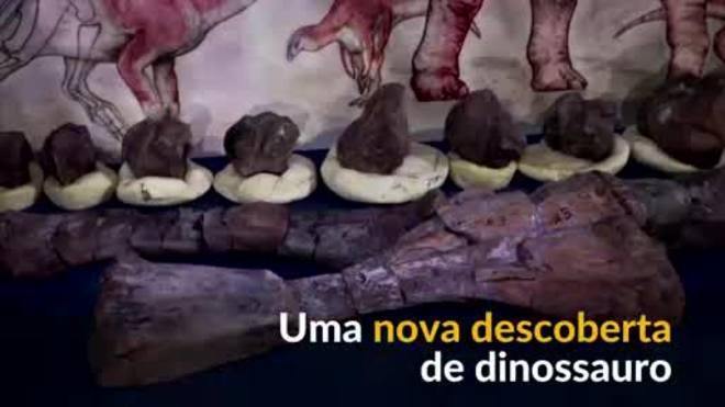 Cientistas argentinos descobrem nova espécie de dinossauro