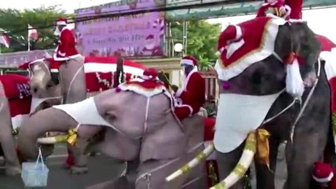 Elefantes papais-noéis distribuem máscaras a estudantes na Tailândia