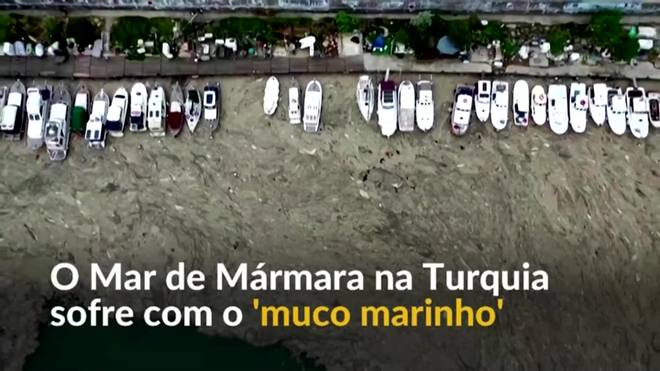O problema do 'muco marinho' na Turquia