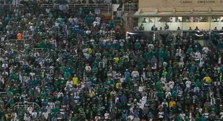 1. Palmeiras