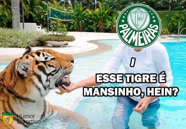 1ª rodada (04/03/2020) - Tigre 0 x 2 Palmeiras
