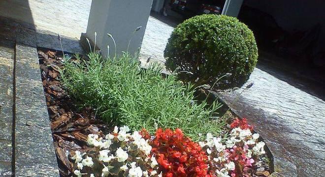 108479-jardim-jardinagem-cadeiras-jardins-viva-decora-108479