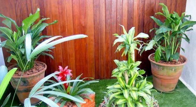 108497-jardim-jardinagem-cadeiras-jardins-viva-decora-108497