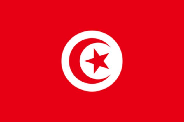 18º - lugar – Tunísia: 2 pontos (ouro: 0 / prata: 1 / bronze: 0)