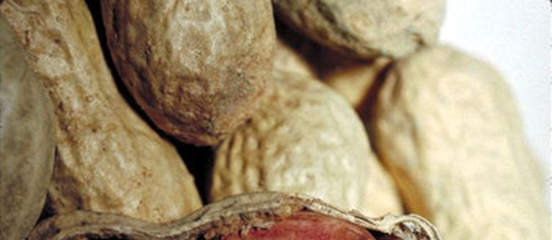 Amendoim é rico em gorduras que ajudam a baixar os níveis de colesterol ruim (LDL) do sangue