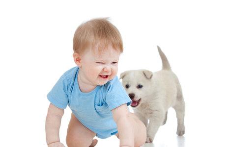 Cães levam sujeira e germes para dentro de casa, amadurecendo mais rapidamente o sistema imunológico das crianças
