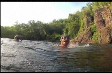 O turista conseguiu nadar e se safar do animal