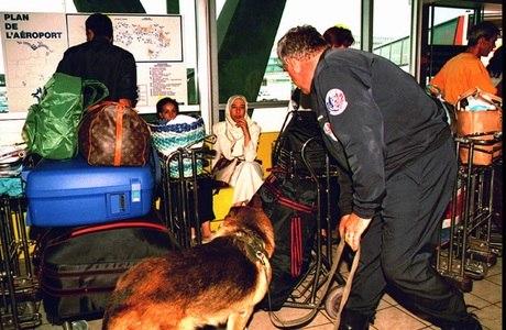 Polícia investiga passageiros em um aeroporto europeu (imagem ilustrativa)