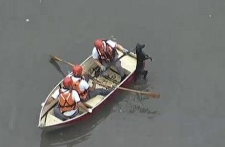 Bombeiros utilizaram um barco para chegar até o cachorro
